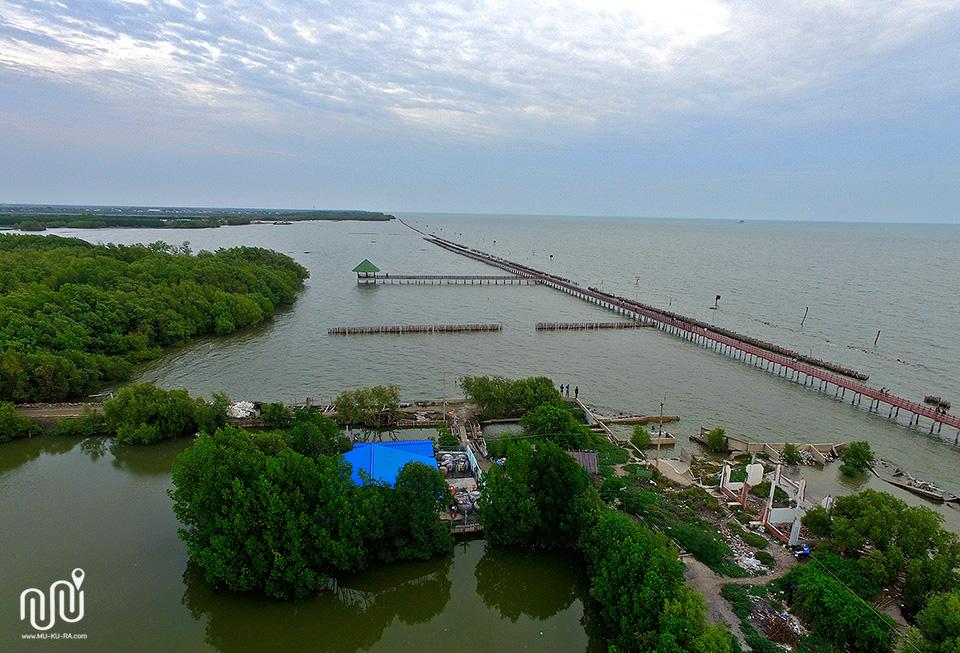 สะพานไม้ทอด ชายทะเลบางขุนเทียน