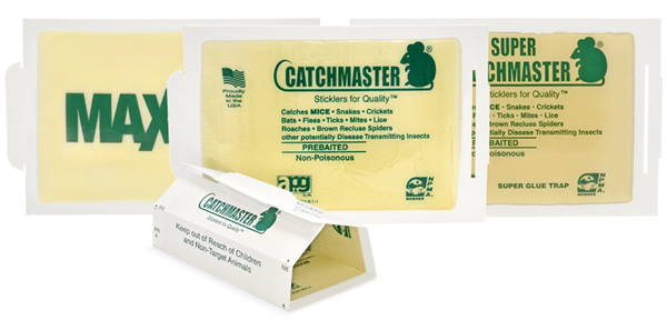 Catchmaster Glue Board