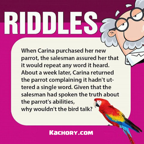 The Speaking Parrot Riddle