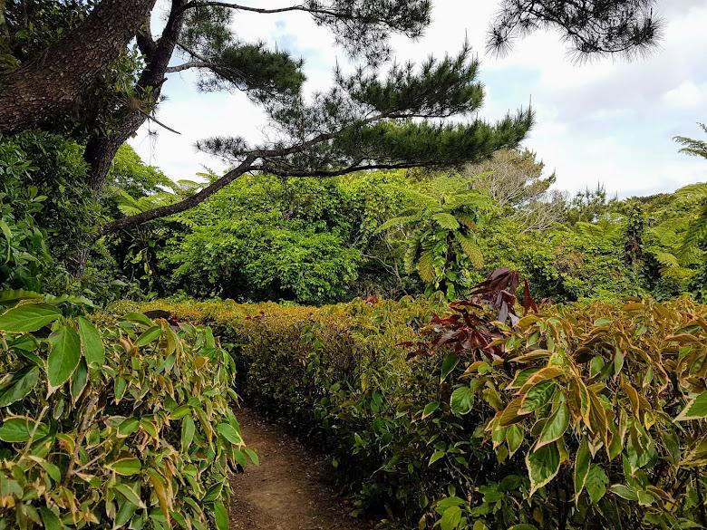 園內的迷宮,一個人走有點可怕