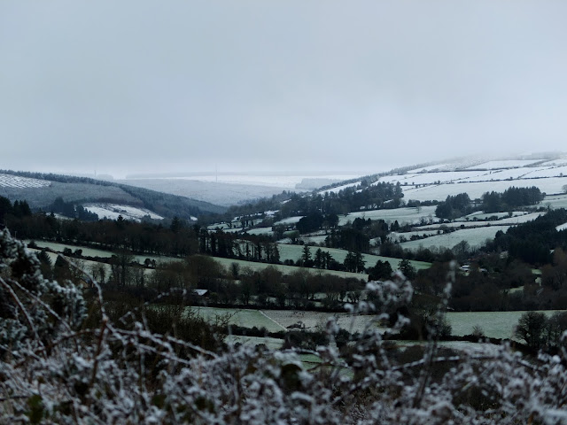 Photo taken over the hedge overlooking a valley in North Cork just as it started to snow.