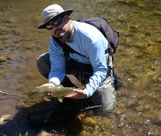 green drake fly pattern brown trout