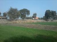 Plot in Medical Road Gorakhpur, Medical College Road Gorakhpur, Medical College Road, Plots in Medical Road Gorakhpur, Land in Medical Road Gorakhpur, Plot for sale in Gulhariya Thana Gorakhpur, Plot in Gulhariya Thana Gorakhpur, Property in Medical Road Gorakhpur, Property in Gulhariya Thana Gorakhpur