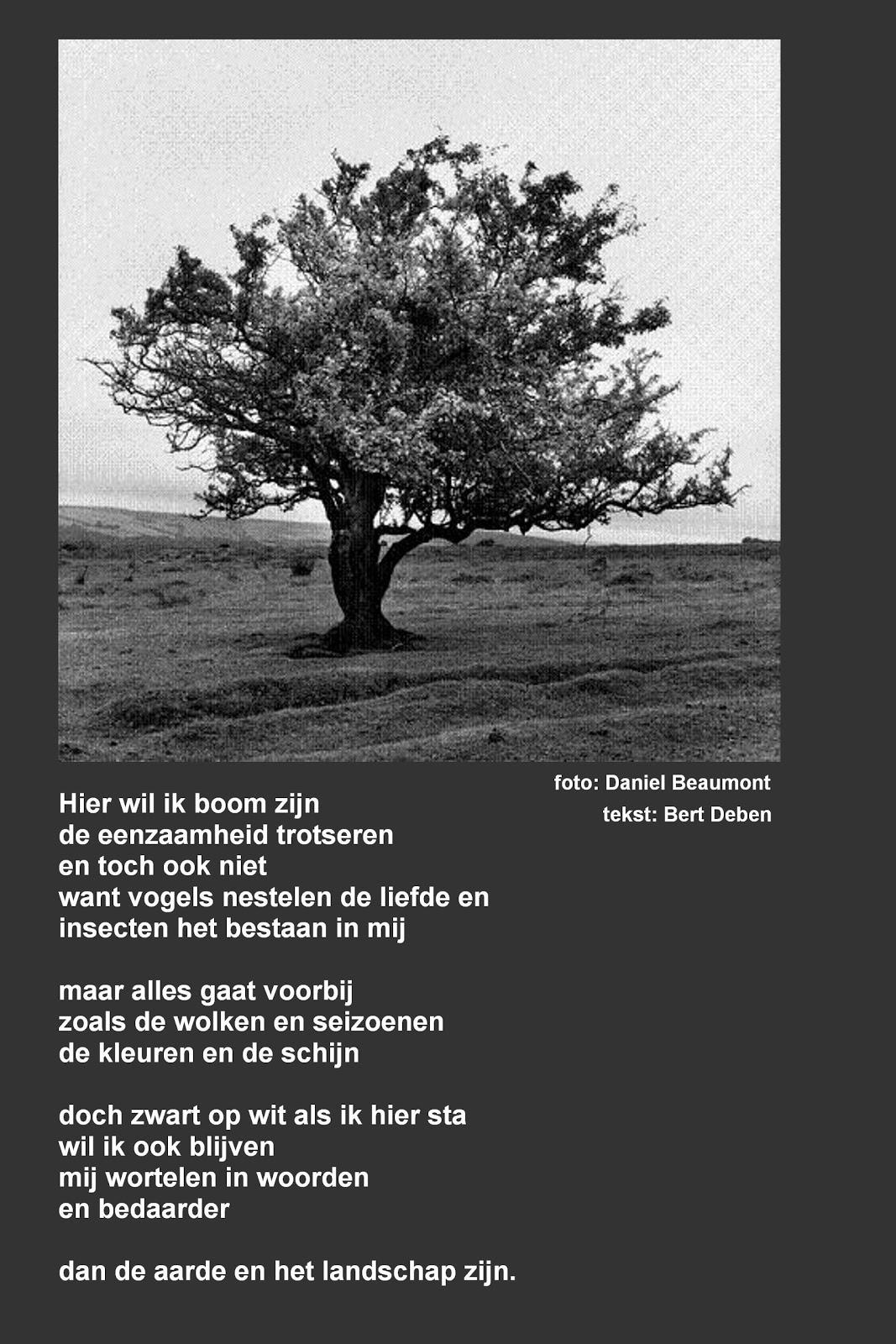 Vaak Top Huwelijk Gedichten Toon Hermans NF62 | Belbin.Info QL14