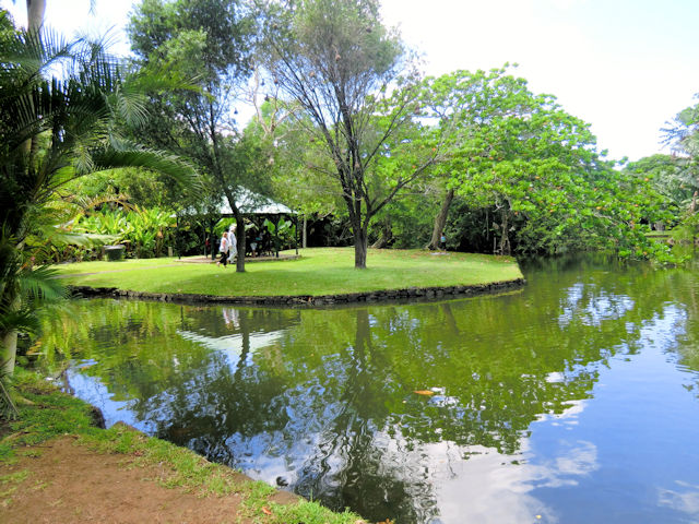 Sir Seewoosagur Ramgoolam Botanic Garden (C) JUREBU