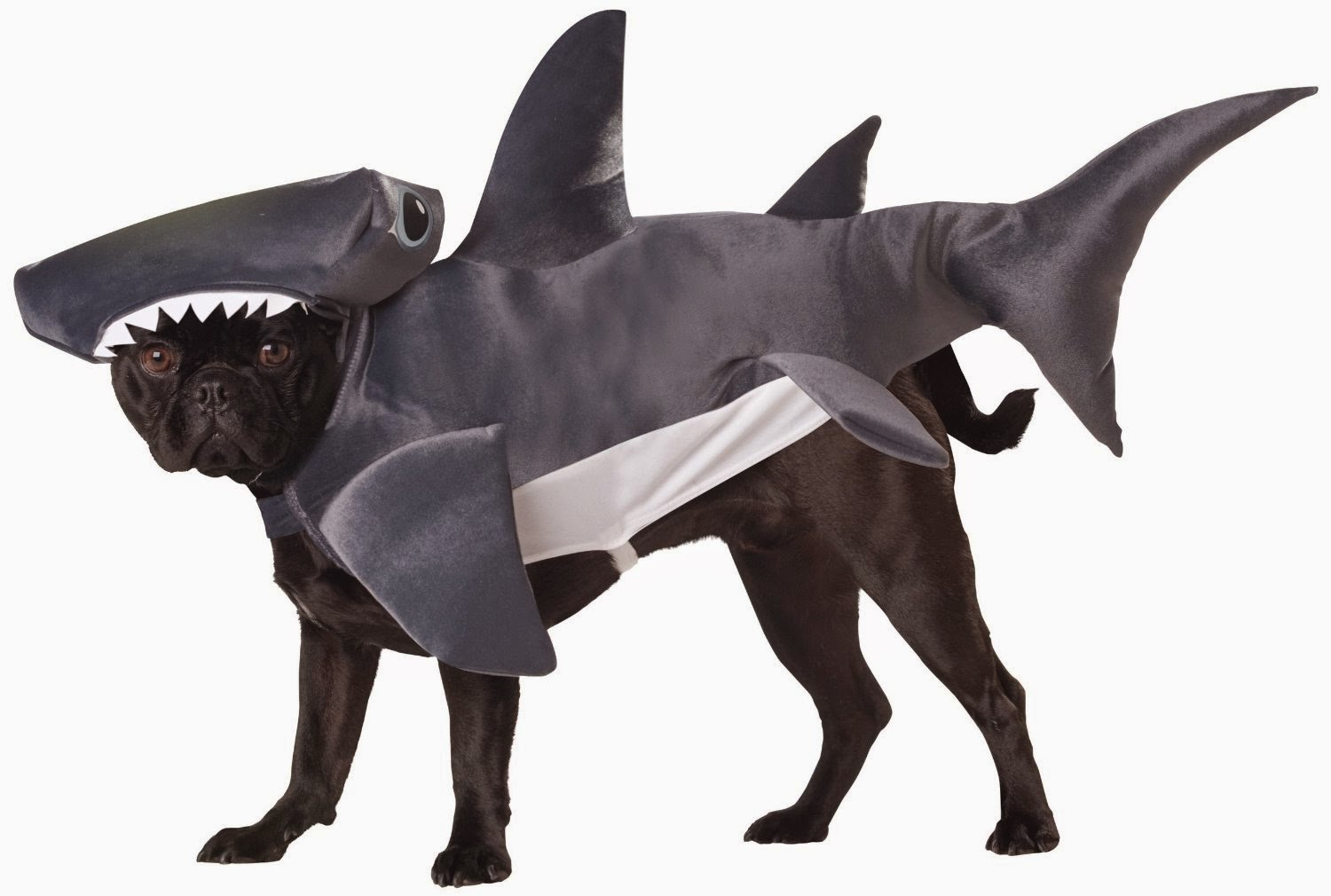 Animal Planet shark costume for dogs with broad skulls