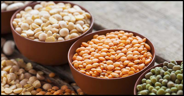 Some Of The Heathiest Beans And Legumes We Can Consume