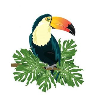 projeto colorido tucano 1268 336 - [RESENHA #336] Voos e sonhos na mata, de Rômulo Marques Ribeiro