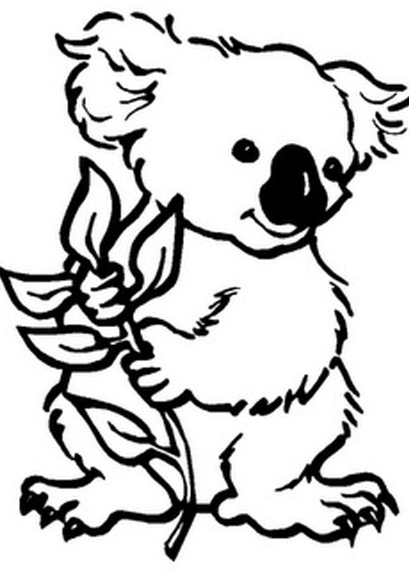 Kleurplaten Dieren Beer.Kleurplaten Dieren Koala Beer Kleurplaatjes