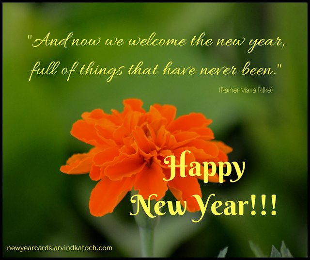 welcome, new year, Marigold, Flower, New Year Card,