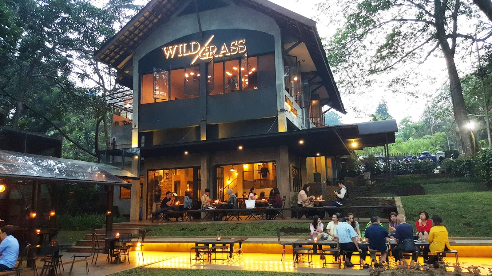 Hasil gambar untuk Wild Grass di Bandung