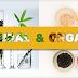 Bạn đã biết cách phân biệt Mỹ phẩm thiên nhiên và mỹ phẩm hữu cơ chưa?
