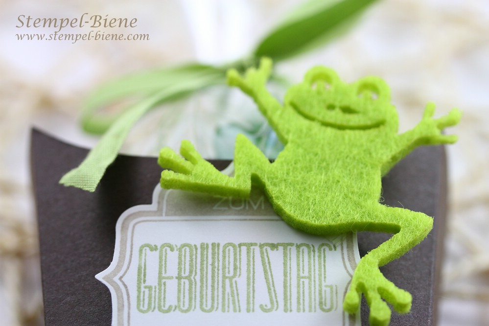 Froschiges Geburtstagsset, Stampin Up Bigz l Pommesschachtel, Stampin' Up Workshop, Stampin Up Winterkatalog