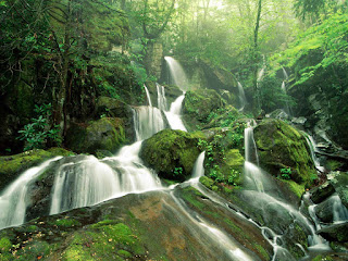 Beautiful Nature Images