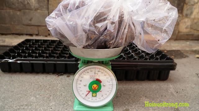 Và sau khi ngâm gần 2.5 lít nước, đã được 3 kg thành phẩm