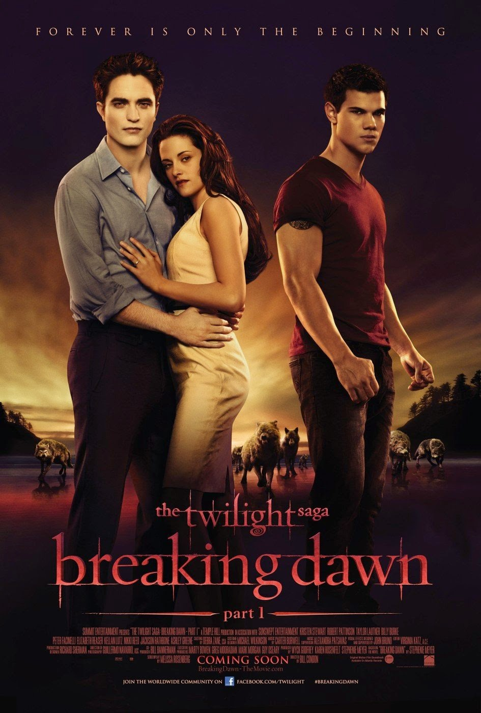 Twilight Saga Breaking Dawn Part 1  (2011) ταινιες online seires xrysoi greek subs