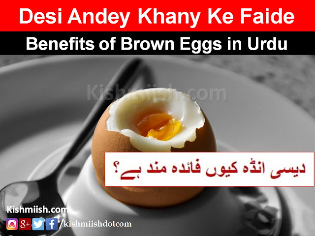 desi ande ke fayde, benefits of brown eggs in Urdu, benefits of desi eggs in Urdu, Health Benefits In Urdu, Health Tips In Urdu, Urdu Health Tips, Urdu Tips, Desi Totkay, Desi Ilaj,