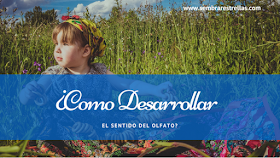 Olfato, metodo Doman, metodo Montessori, frascos de olor, alimentacion complementaria, desarrollo sensorial, ¿Cómo desarrollar el sentido del olfato?,
