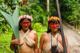 Z wizytą w dżungli