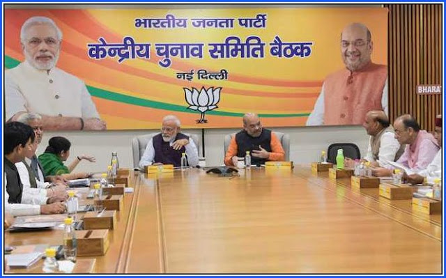 Lok Sabha Election 2019 BJP Central Election Committee