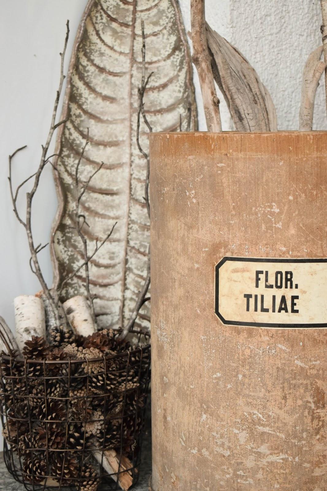 Dekoidee Natur Herbst Eingang Tür natürlich dekorieren Kiefernzapfen herbstlich