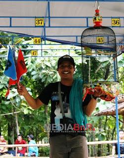 Lovebird Sunyi dan Chilis Mendominasi Angel, Mahkota dan Janoko Raih Prestasi dalam Latpres Perdana (GSL)