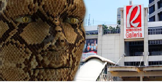 Revisiting The Robinson Snake Man Urban Legend