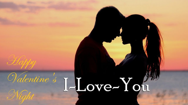 Valentine's Day Good Night Whatsapp Status DP