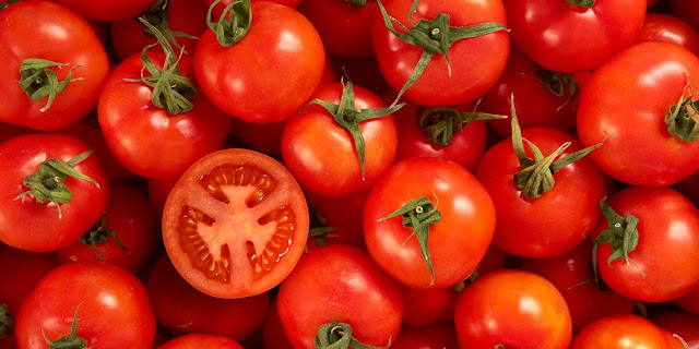 manfaat buah tomat untuk menurunkan berat badan