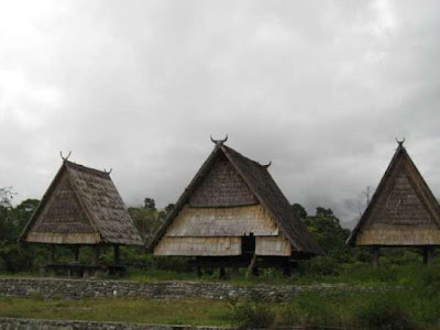 Gambar Rumah Adat Sulawesi Tengah