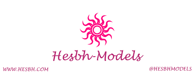 hesbh models
