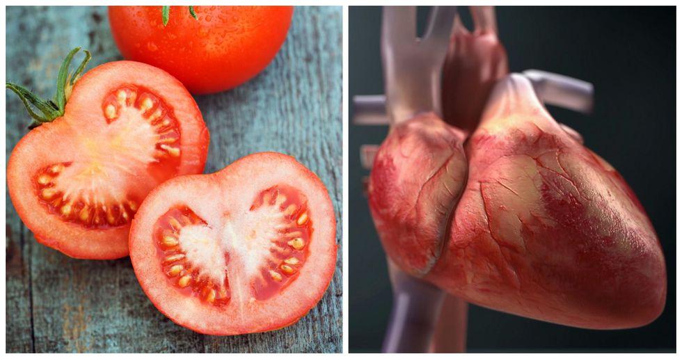 Tomato, Heart