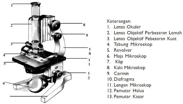 Gambar Mikroskop Beserta Fungsinya