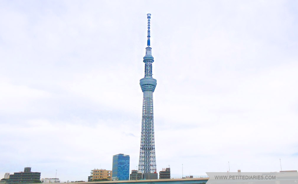 skytree tower review
