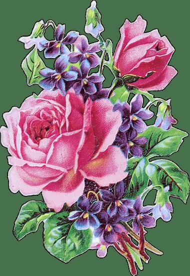 zoom dise o y fotografia 30 rosas vintage para scrap rose png. Black Bedroom Furniture Sets. Home Design Ideas