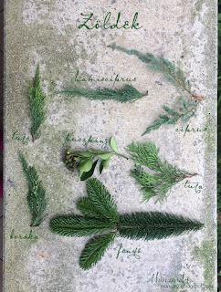 All Saints Wreath - DIY tutorial - Plants