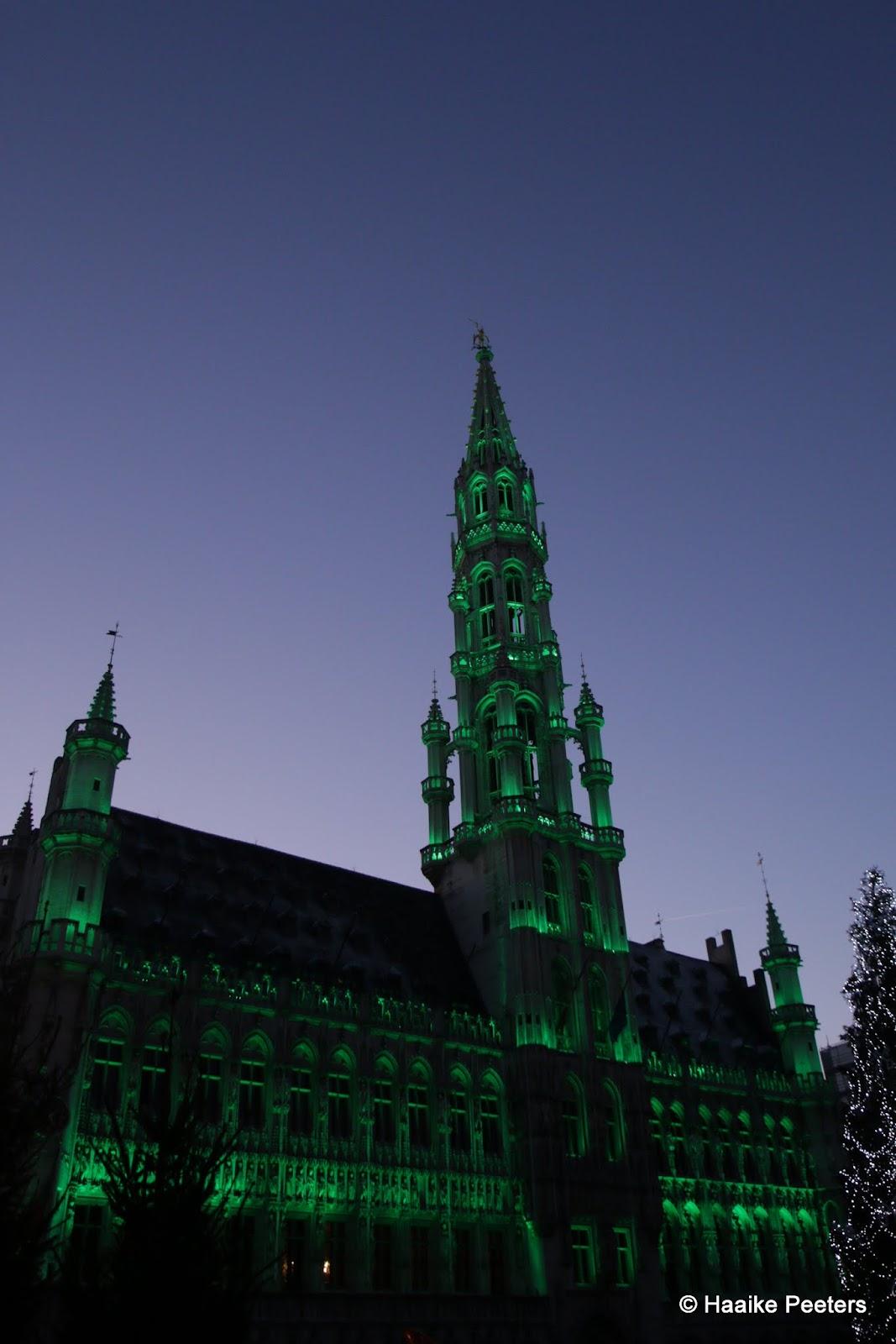 Stadhuis Brussel (Le petit requin)