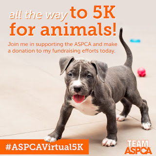 Please support our #ASPCAVirtual5K walk