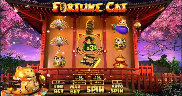 Cực dễ để chơi slot Fortune Cat