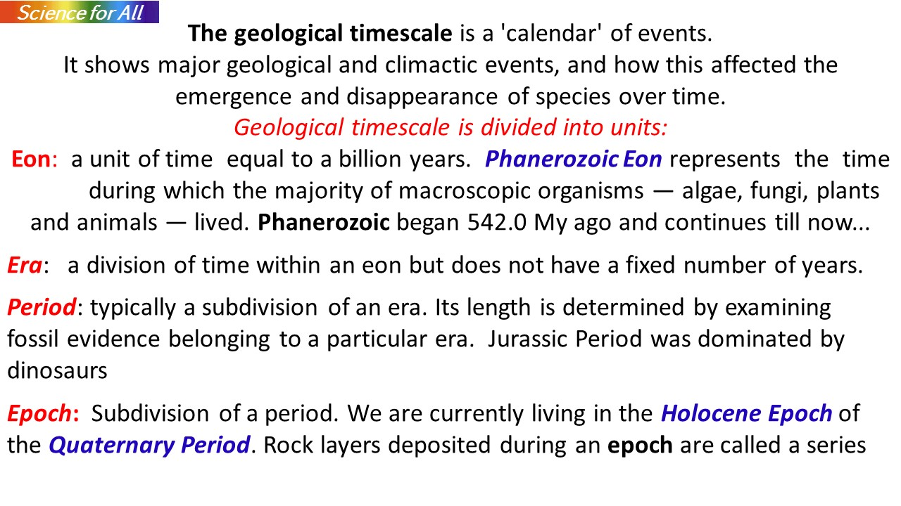 Th Following Geologic Which Scale Time Starting Shows Correct Order