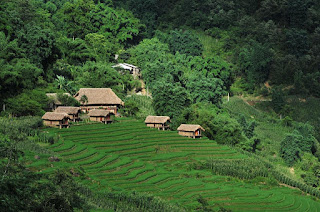 Eco-Palms-House-Sapa