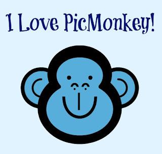 Picmonkey review