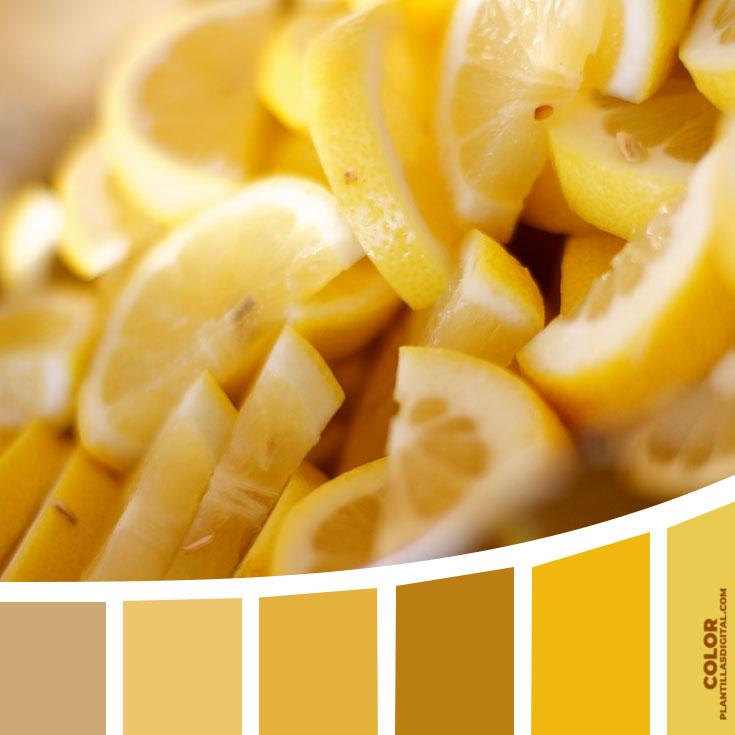 color_383