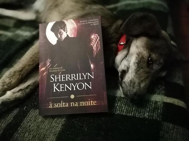 livro-À-Solta-na-Noite-Sherrilyn-Kenyon