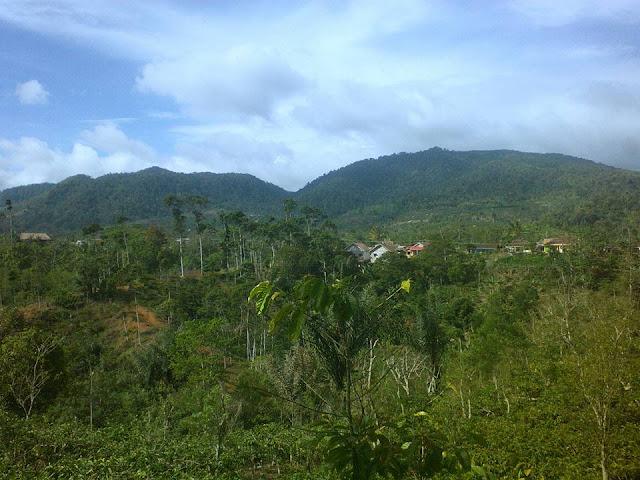 Desa Tegajul Padang Tambak