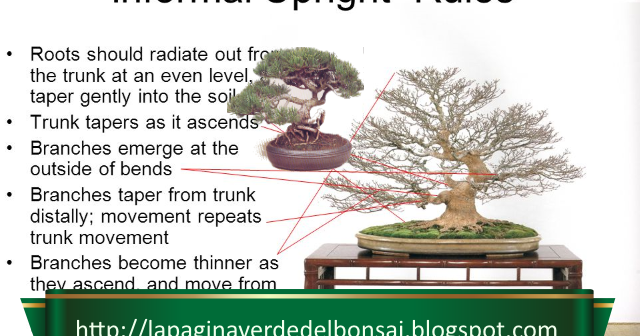 The Ancient Art of Bonsai cover image