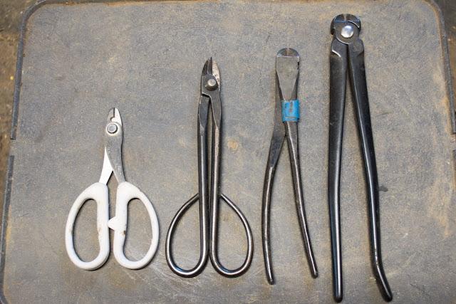 Complete Set of Bonsai Tools - Bonsai Tools Explained