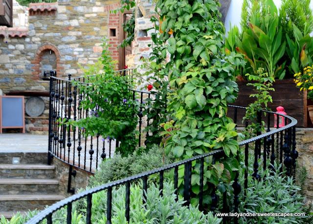 Ayasoluk Hotel garden