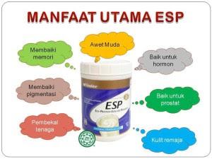 ESP untuk kesihatan prostat