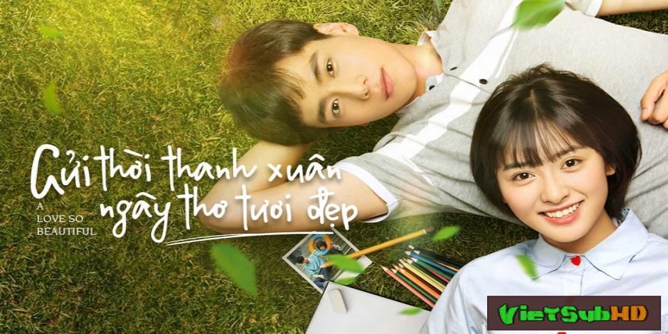 Phim Gửi Thời Thanh Xuân Ngây Thơ Tươi Đẹp Tập 24/24 VietSub HD | A Love So Beautiful 2017